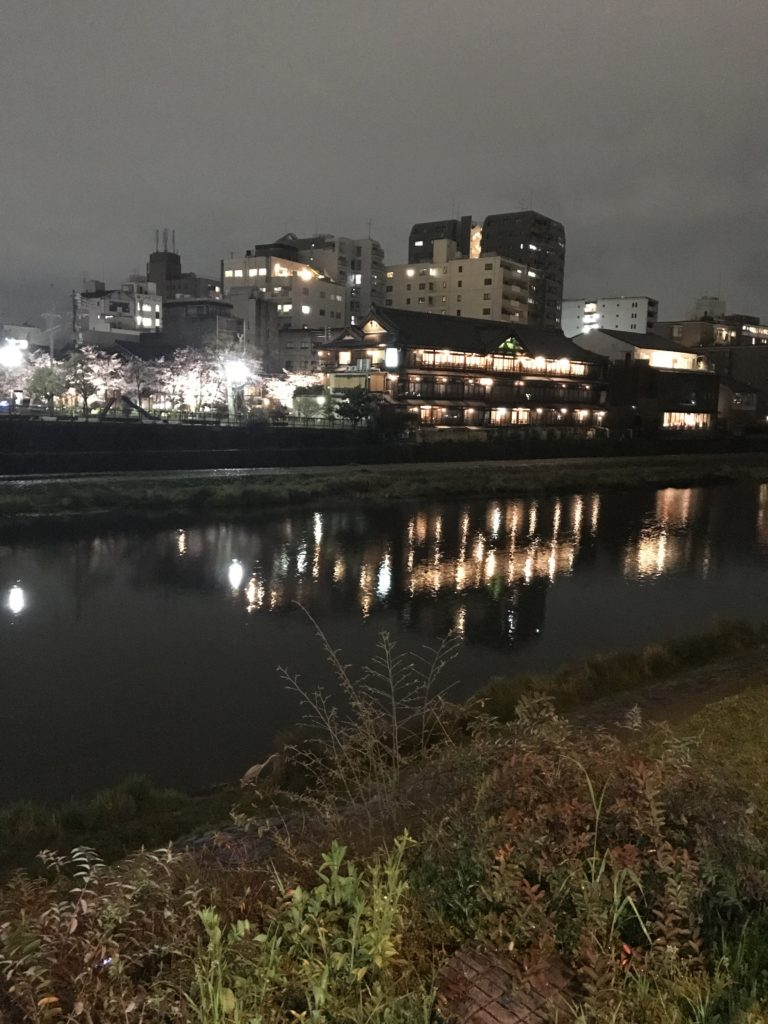 img 0153 768x1024 Kyoto (1/2) : sakura, karaoké, et pagodes