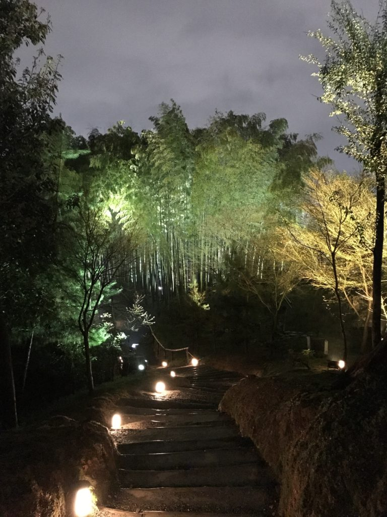 img 0210 768x1024 Kyoto (1/2) : sakura, karaoké, et pagodes