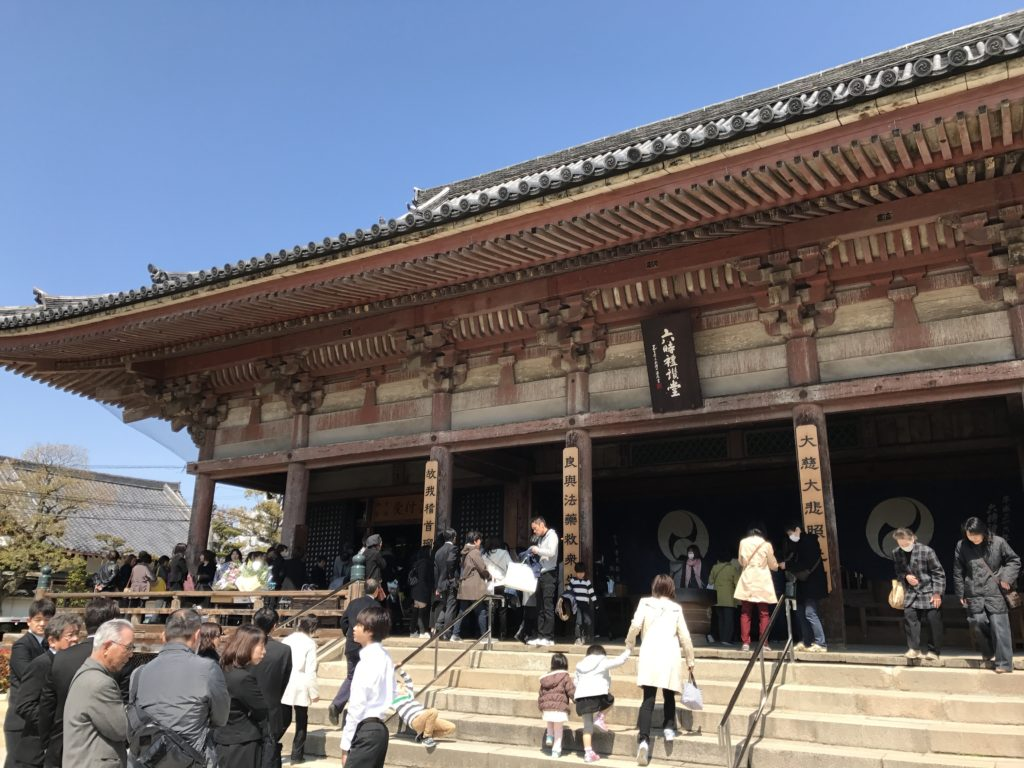 img 0301 1024x768 Osaka (1/3) : orgie alimentaire, cerisiers précoces, pluie, et shopping
