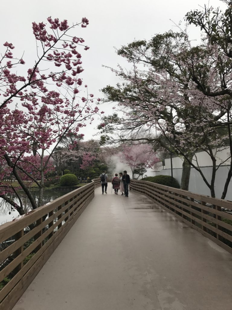 img 0329 768x1024 Beppu, Hiroshima, Miyajima : cest le sud