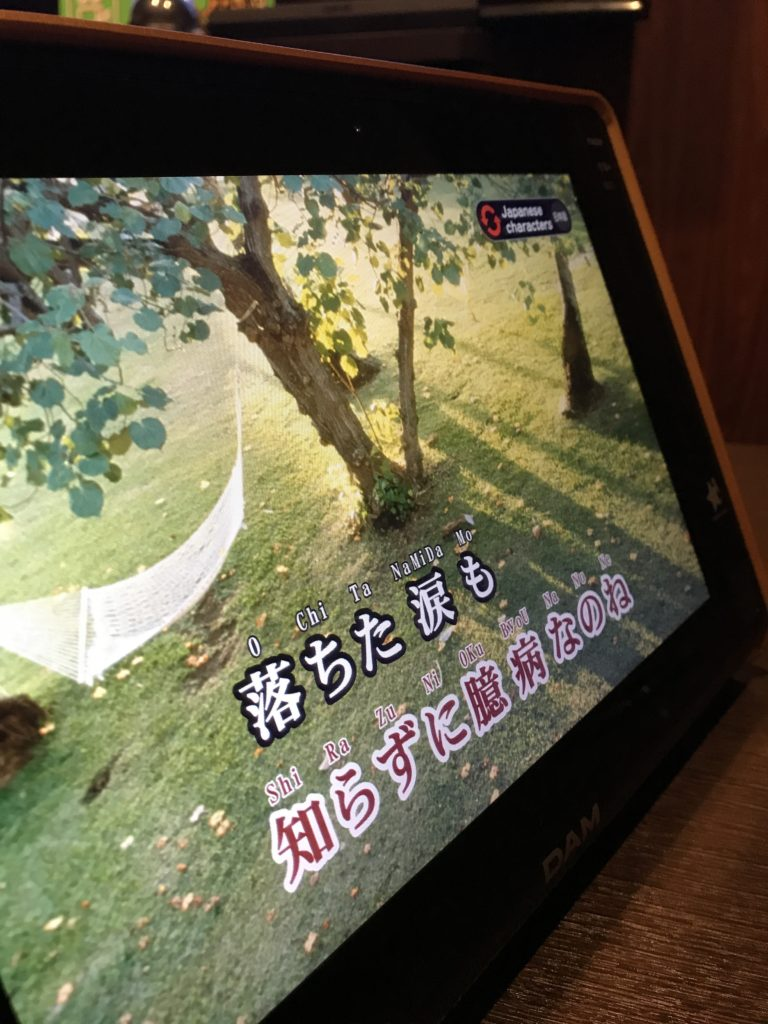 img 0449 768x1024 Beppu, Hiroshima, Miyajima : cest le sud