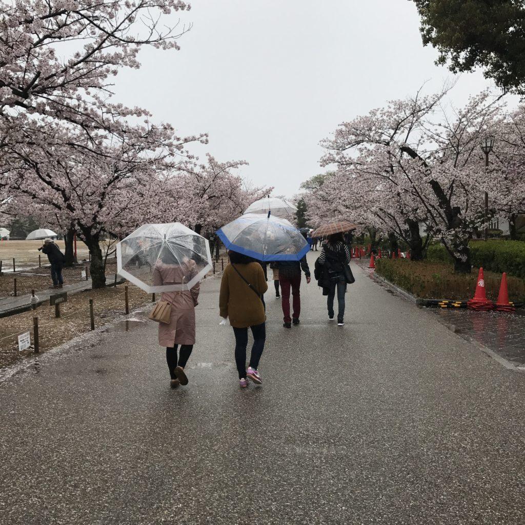 img 0581 1024x1024 Osaka (2/3) / Himeji / Yoshino : cerisiers et repas de gros