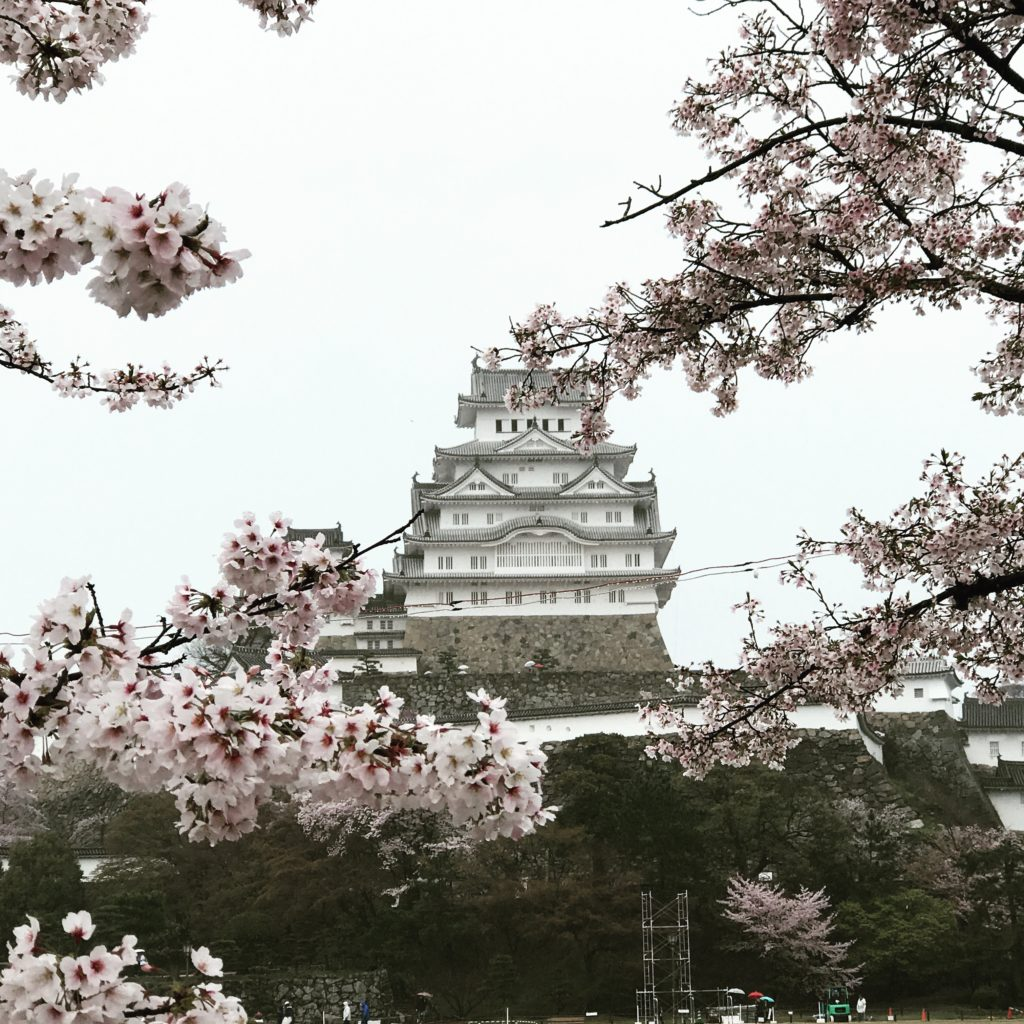 img 0588 1024x1024 Osaka (2/3) / Himeji / Yoshino : cerisiers et repas de gros