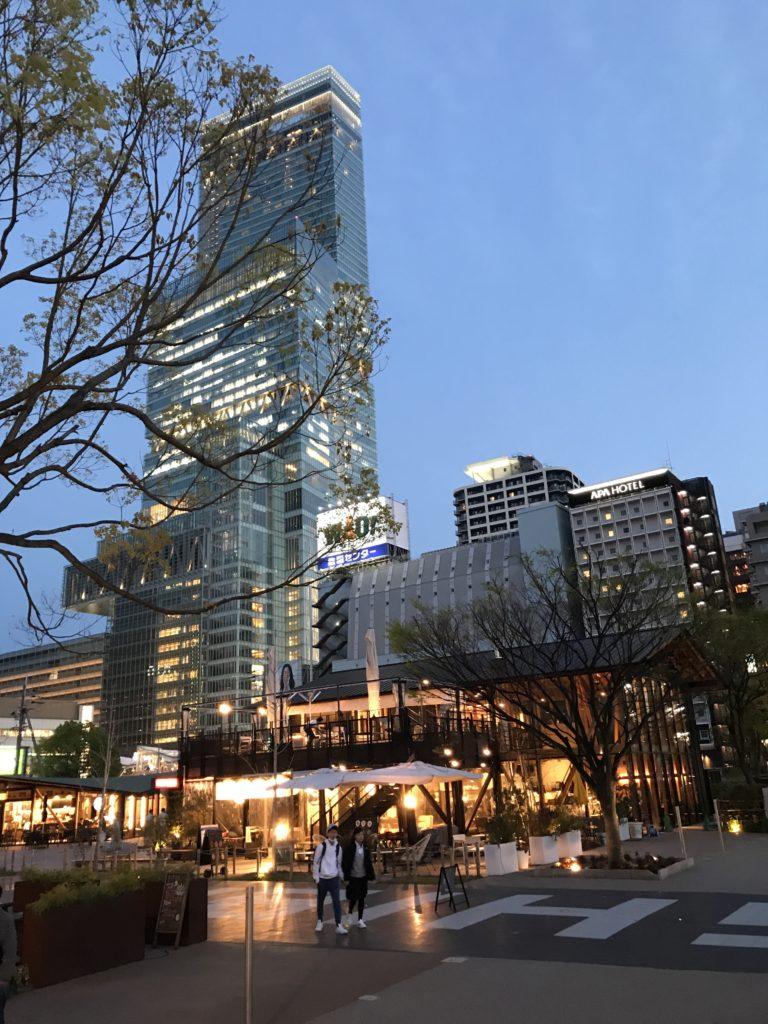 img 0729 768x1024 Osaka (2/3) / Himeji / Yoshino : cerisiers et repas de gros