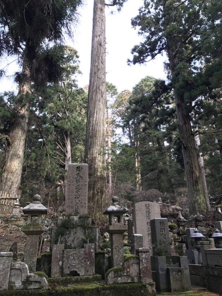 img 0799 768x1024 Koyasan (Mt. Koya) : une nuit parmi les moines, une journée parmi les morts