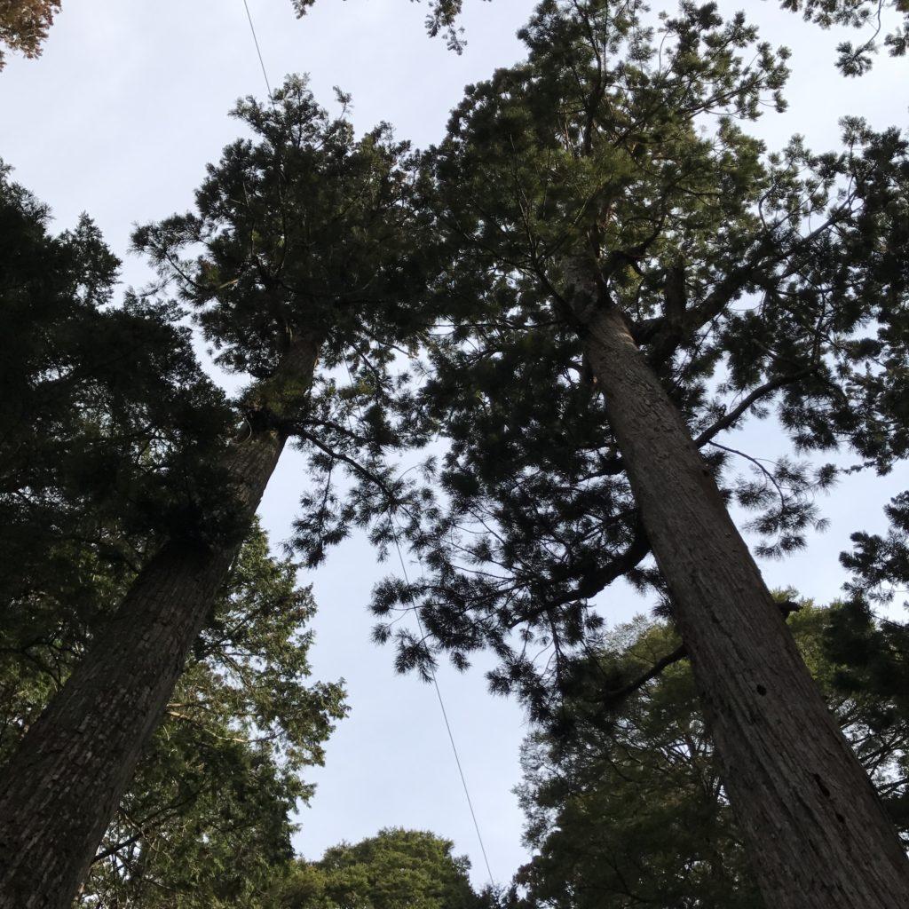 img 0803 1024x1024 Koyasan (Mt. Koya) : une nuit parmi les moines, une journée parmi les morts
