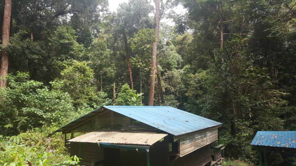 camp 1024x576 Mulu National Park ou Les Dupond et Dupont au pays des sangsues