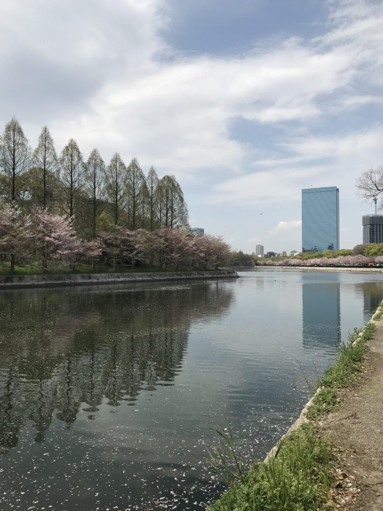 img 0971 768x1024 Osaka (3/3) / Kobe : Boeuf, Clubs et Jeux darcade