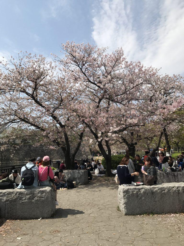 img 0976 768x1024 Osaka (3/3) / Kobe : Boeuf, Clubs et Jeux darcade