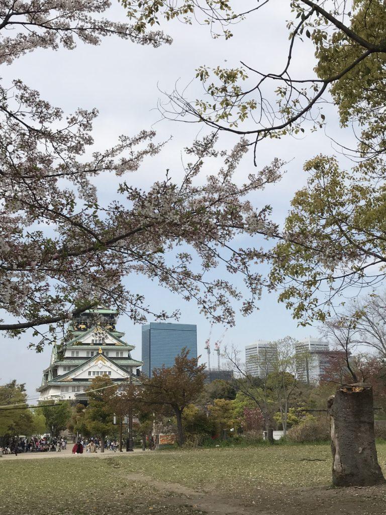 img 0984 768x1024 Osaka (3/3) / Kobe : Boeuf, Clubs et Jeux darcade