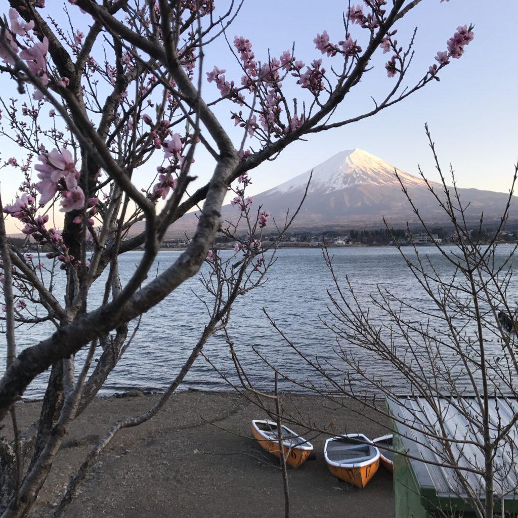 img 1268 1024x1024 Kawaguchiko : Mont Fuji et onsen