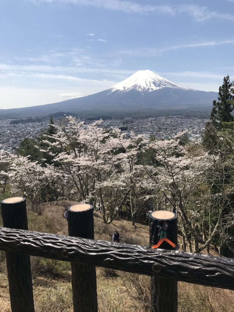 img 1347 768x1024 Kawaguchiko : Mont Fuji et onsen