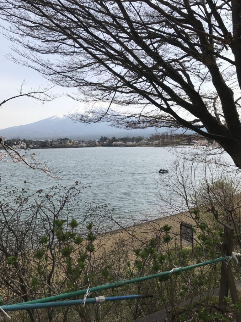 img 1389 768x1024 Kawaguchiko : Mont Fuji et onsen