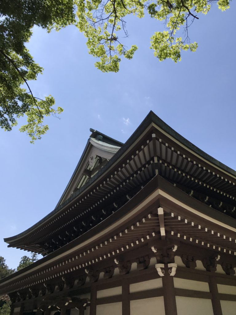img 1684 768x1024 Kamakura : temples, mer et sushis