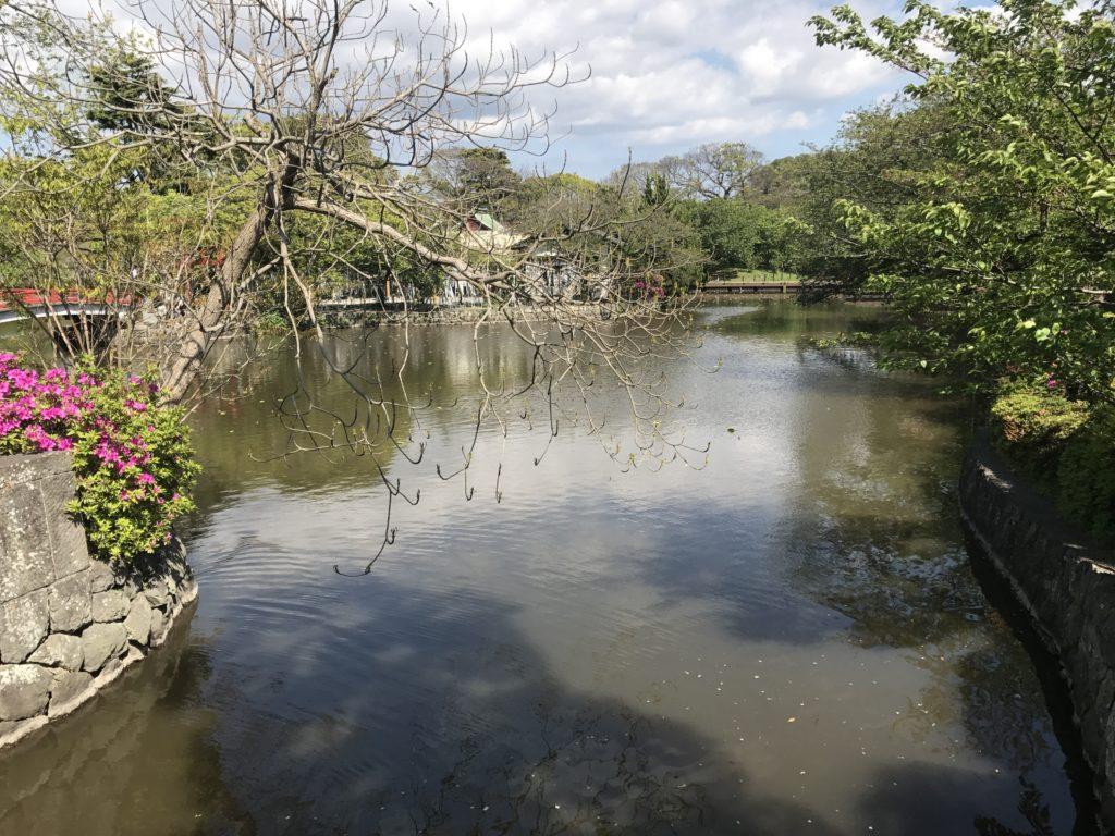 img 1714 1024x768 Kamakura : temples, mer et sushis