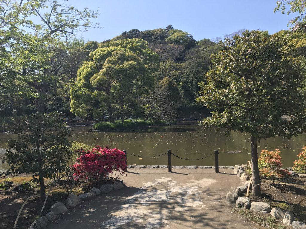 img 1723 1024x768 Kamakura : temples, mer et sushis