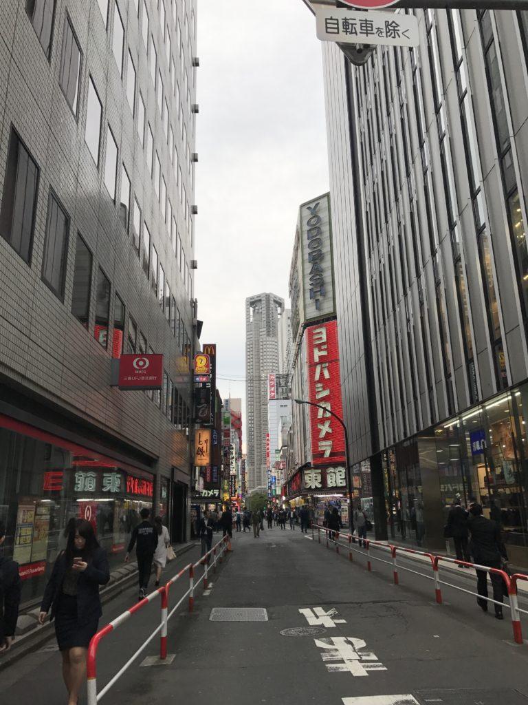 img 1940 768x1024 Tokyo (2/2) : All you can eat, parcs, temples et adieux japonais