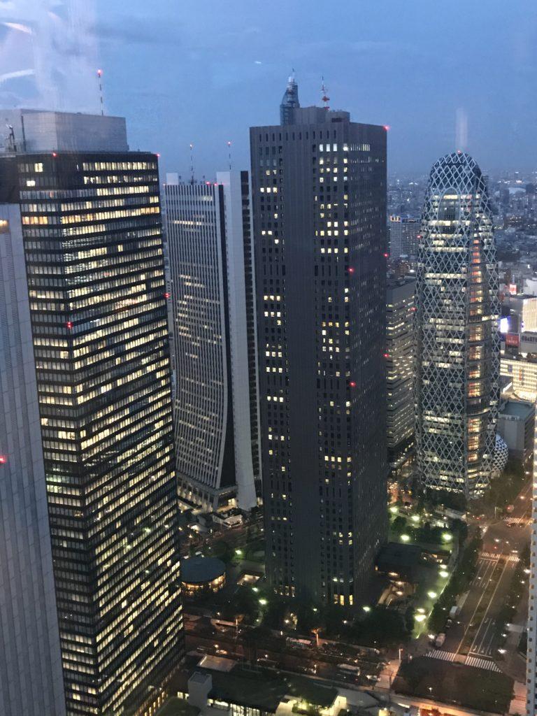 img 1960 768x1024 Tokyo (2/2) : All you can eat, parcs, temples et adieux japonais