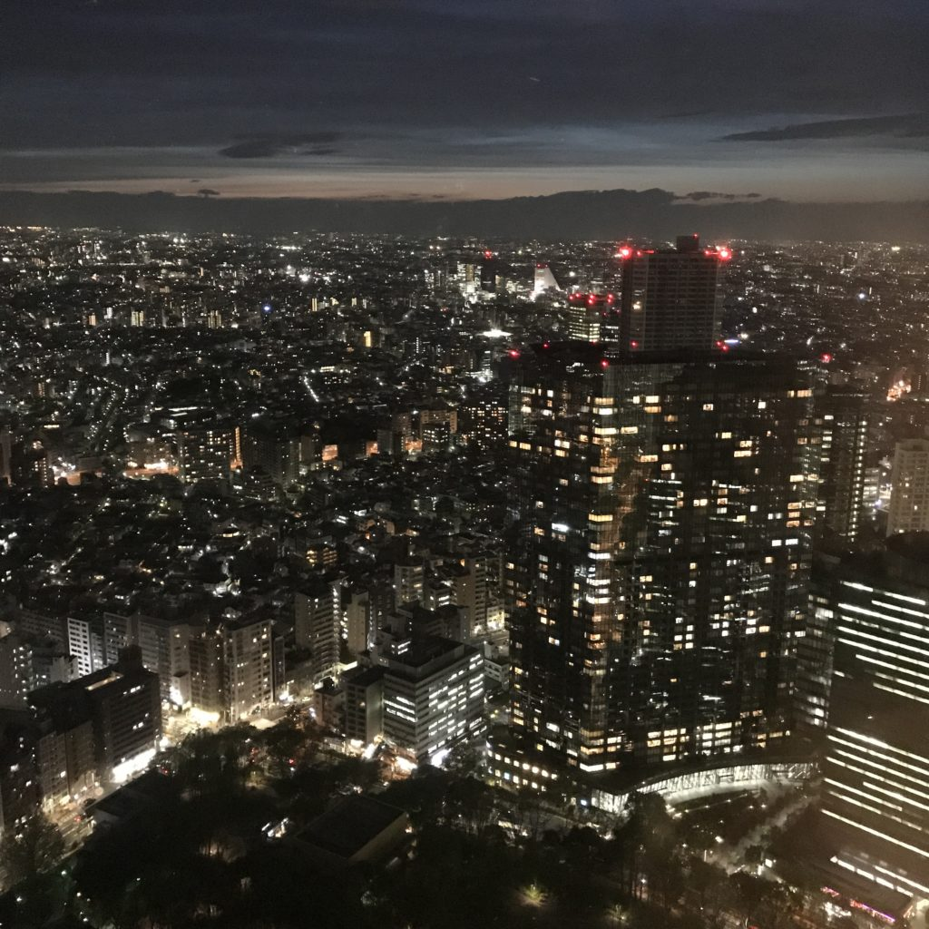 img 1970 1024x1024 Tokyo (2/2) : All you can eat, parcs, temples et adieux japonais