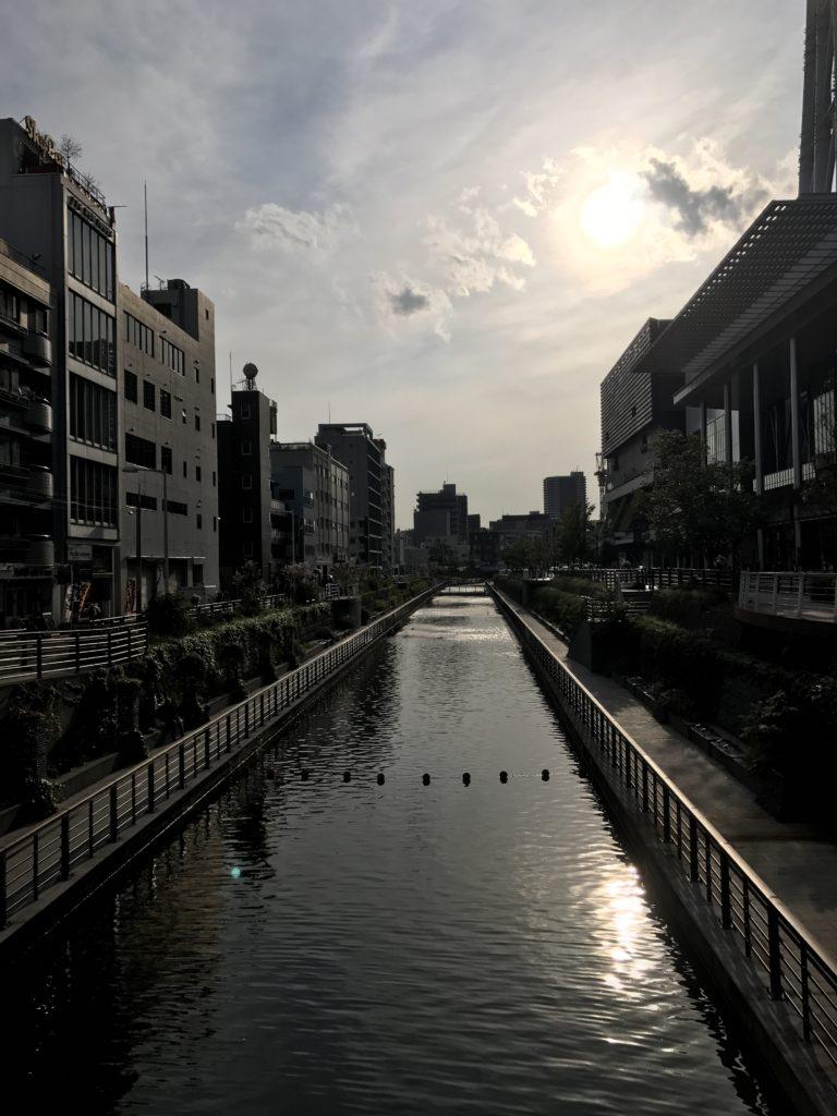 img 2021 768x1024 Tokyo (2/2) : All you can eat, parcs, temples et adieux japonais