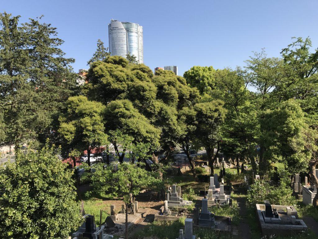 img 2052 1024x768 Tokyo (2/2) : All you can eat, parcs, temples et adieux japonais