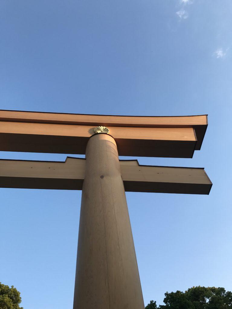img 2090 768x1024 Tokyo (2/2) : All you can eat, parcs, temples et adieux japonais