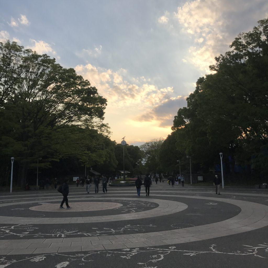 img 2100 1024x1024 Tokyo (2/2) : All you can eat, parcs, temples et adieux japonais