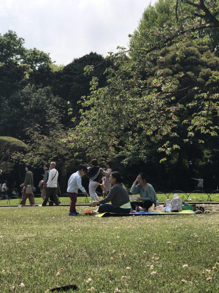 img 2166 768x1024 Tokyo (2/2) : All you can eat, parcs, temples et adieux japonais