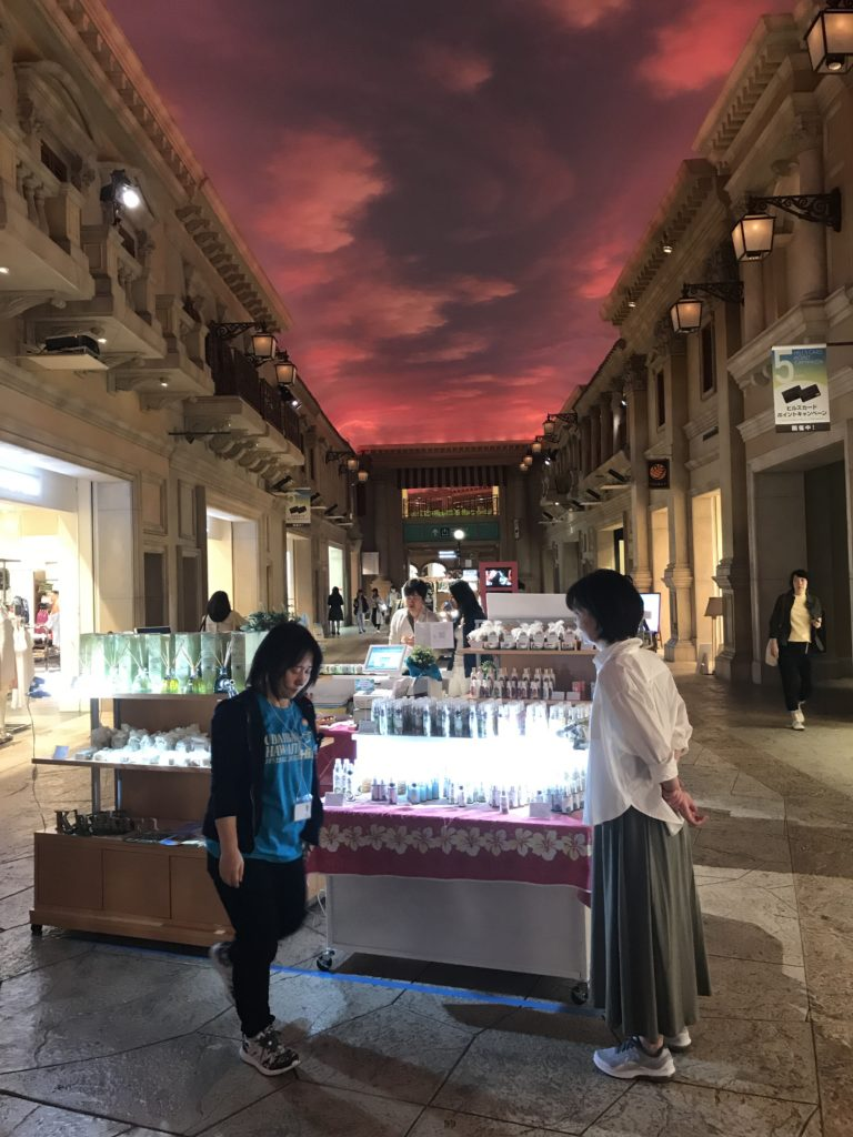 img 2250 768x1024 Tokyo (2/2) : All you can eat, parcs, temples et adieux japonais