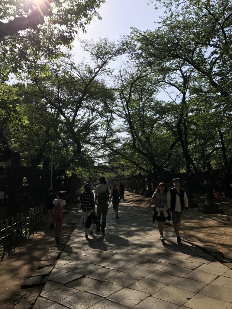 img 2352 768x1024 Tokyo (2/2) : All you can eat, parcs, temples et adieux japonais