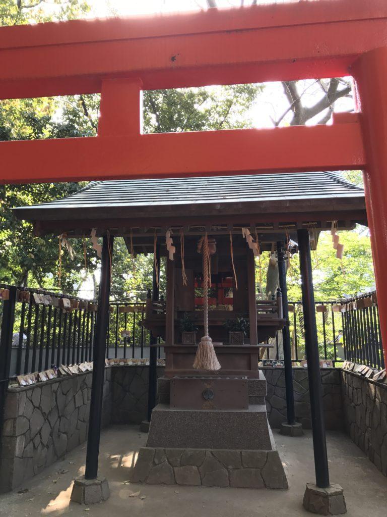 img 2362 768x1024 Tokyo (2/2) : All you can eat, parcs, temples et adieux japonais