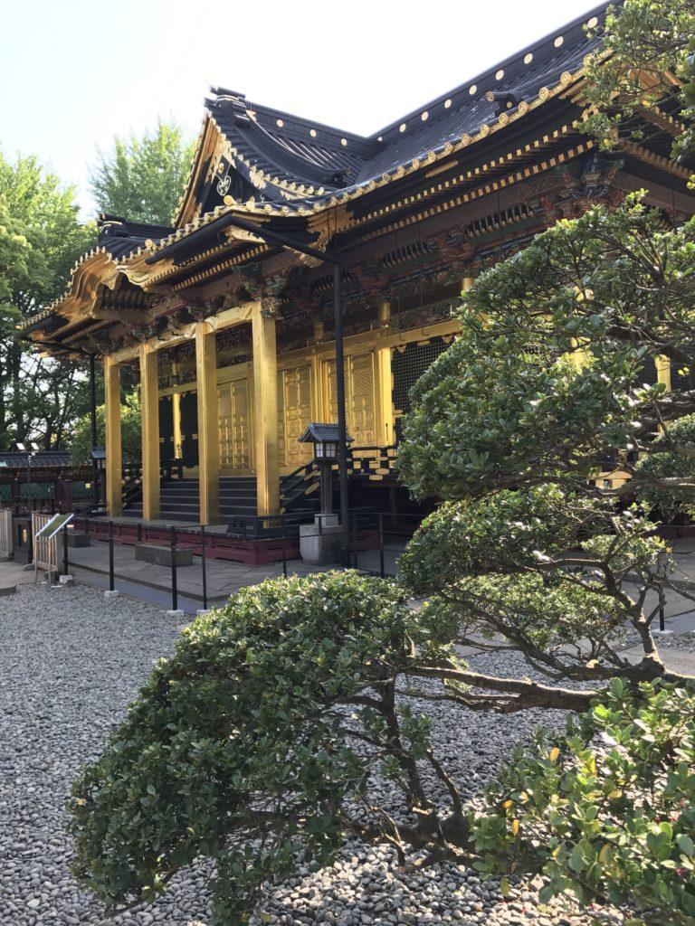 img 2383 768x1024 Tokyo (2/2) : All you can eat, parcs, temples et adieux japonais