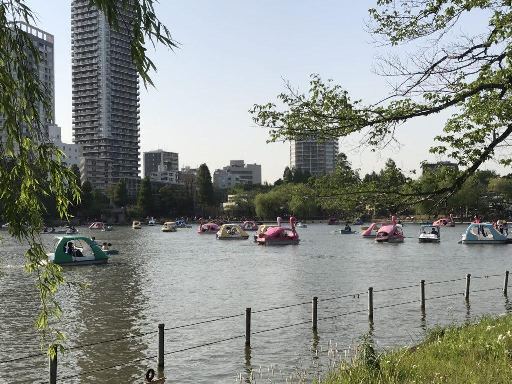 img 2397 1024x768 Tokyo (2/2) : All you can eat, parcs, temples et adieux japonais