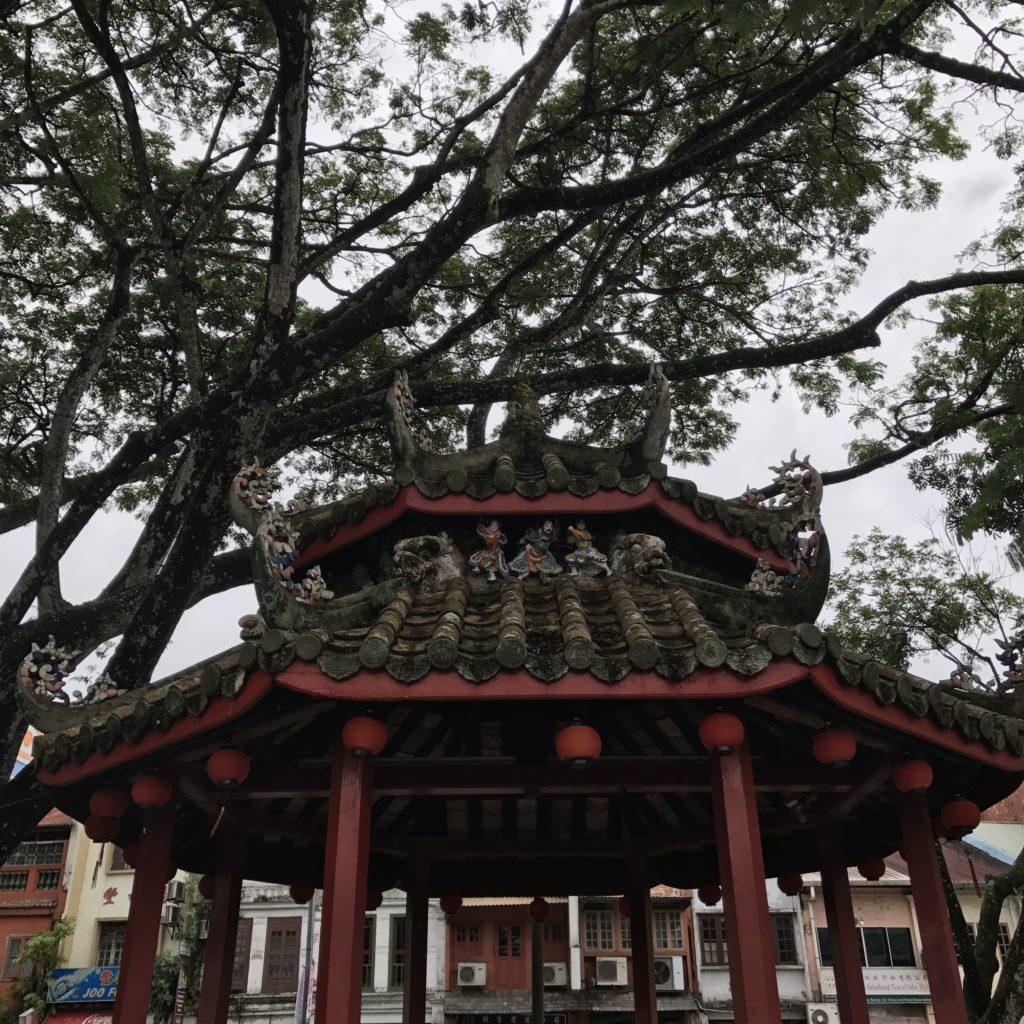 img 2527 1024x1024 Sarawak : Kuching, Semmengoh et Bako National Park
