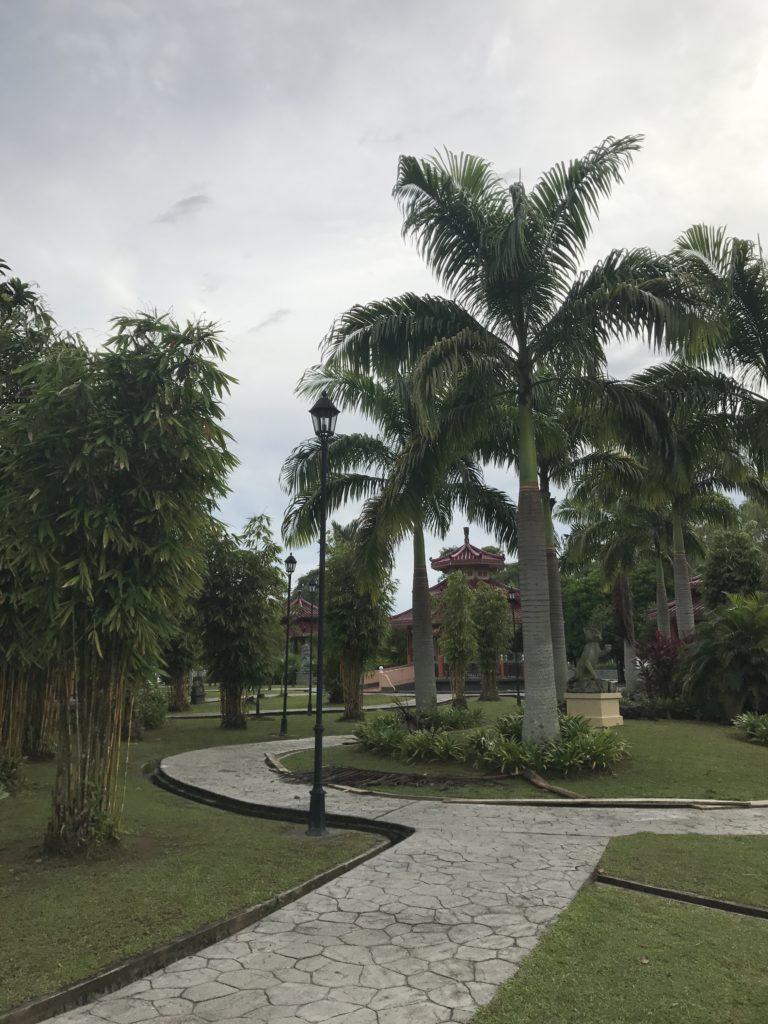 img 2545 768x1024 Sarawak : Kuching, Semmengoh et Bako National Park
