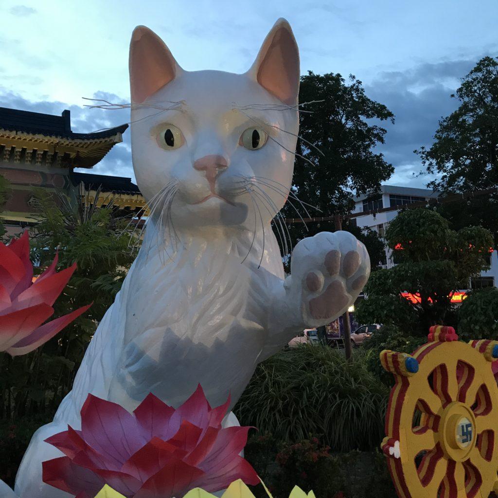 img 2564 1024x1024 Sarawak : Kuching, Semmengoh et Bako National Park