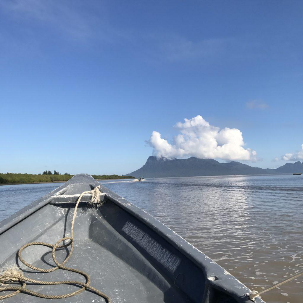 img 2723 1024x1024 Sarawak : Kuching, Semmengoh et Bako National Park