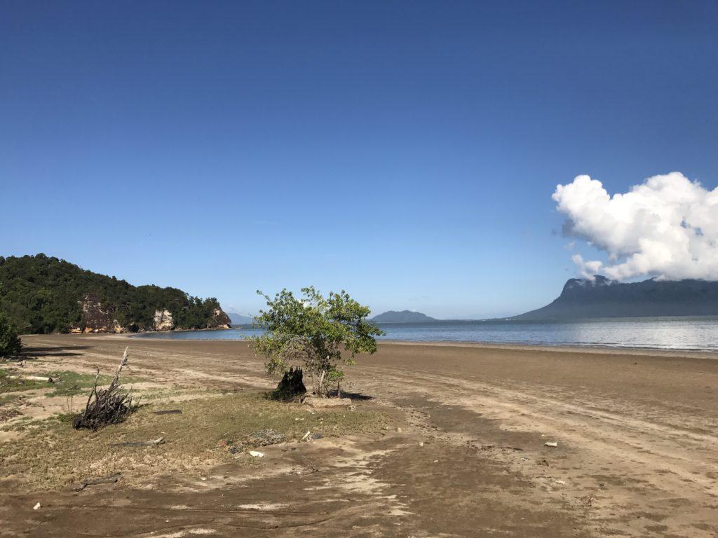 img 2727 1024x768 Sarawak : Kuching, Semmengoh et Bako National Park
