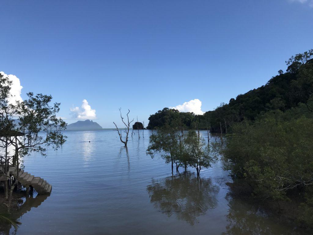 img 2733 1024x768 Sarawak : Kuching, Semmengoh et Bako National Park