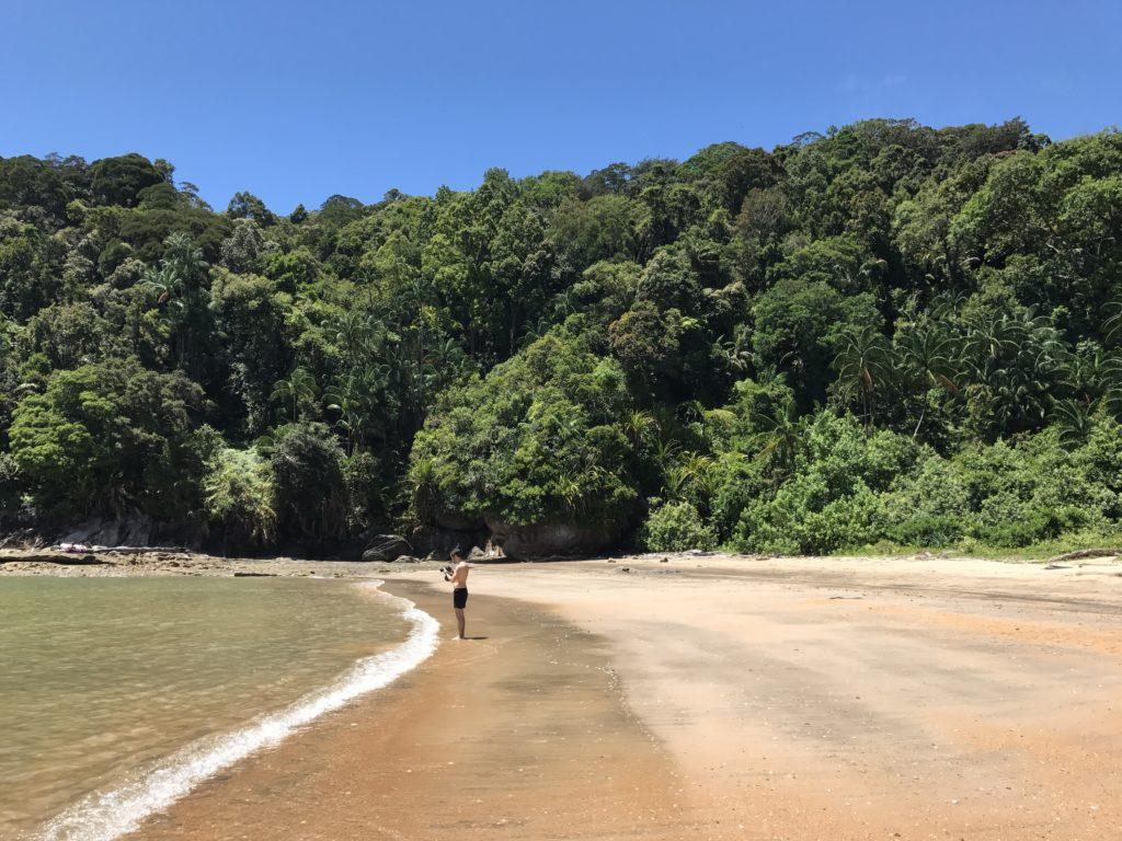 img 2797 1024x768 Sarawak : Kuching, Semmengoh et Bako National Park