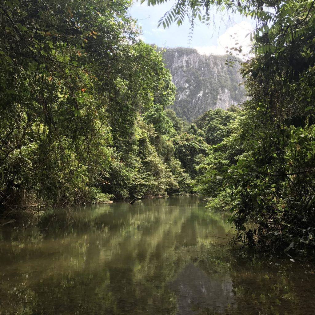img 2949 1024x1024 Mulu National Park ou Les Dupond et Dupont au pays des sangsues