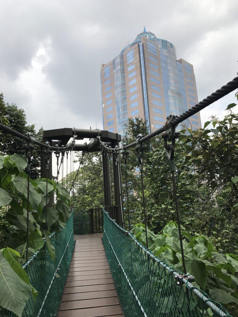 img 3590 1 768x1024 Que faire à Kuala Lumpur pendant une semaine ?
