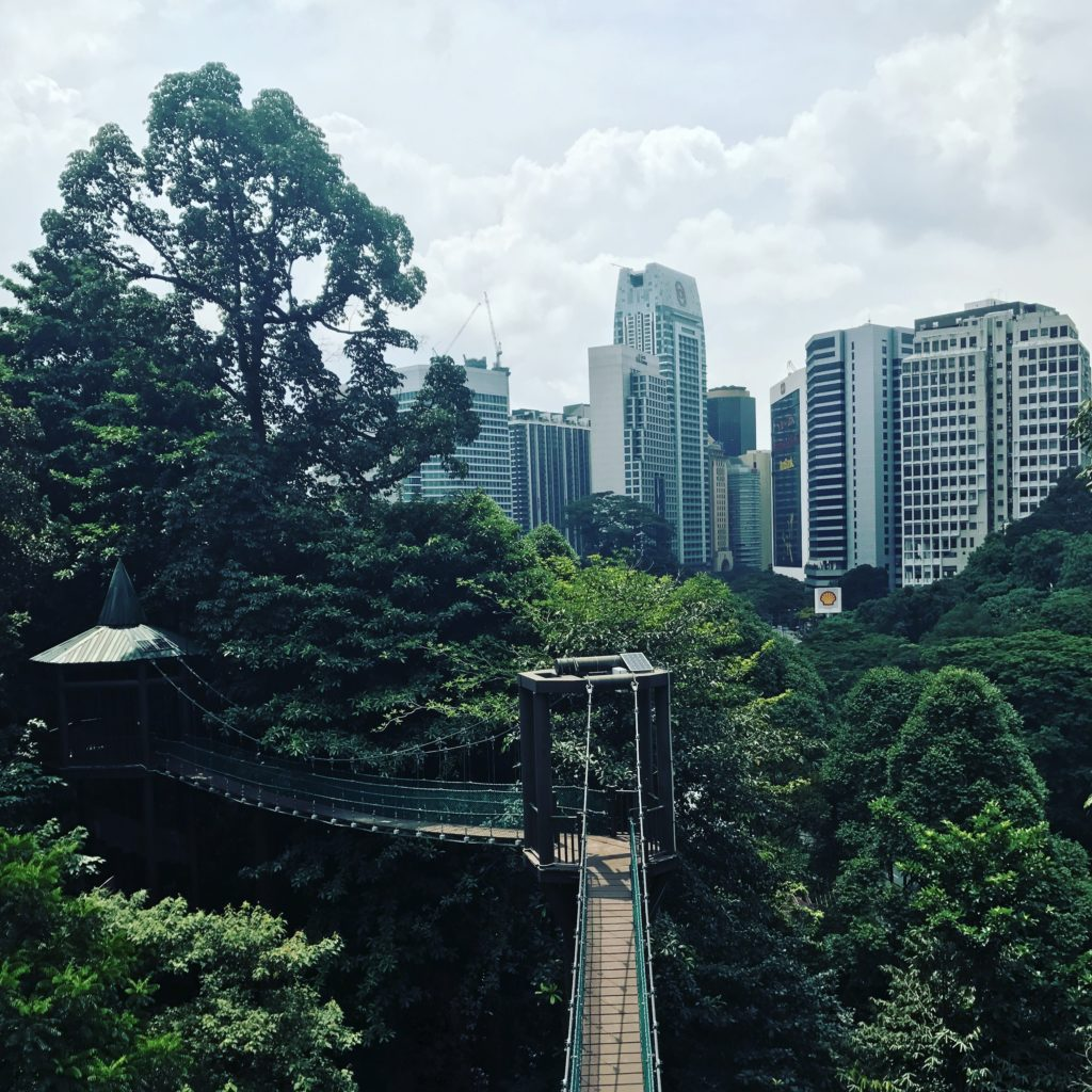 img 3607 1 1024x1024 Que faire à Kuala Lumpur pendant une semaine ?
