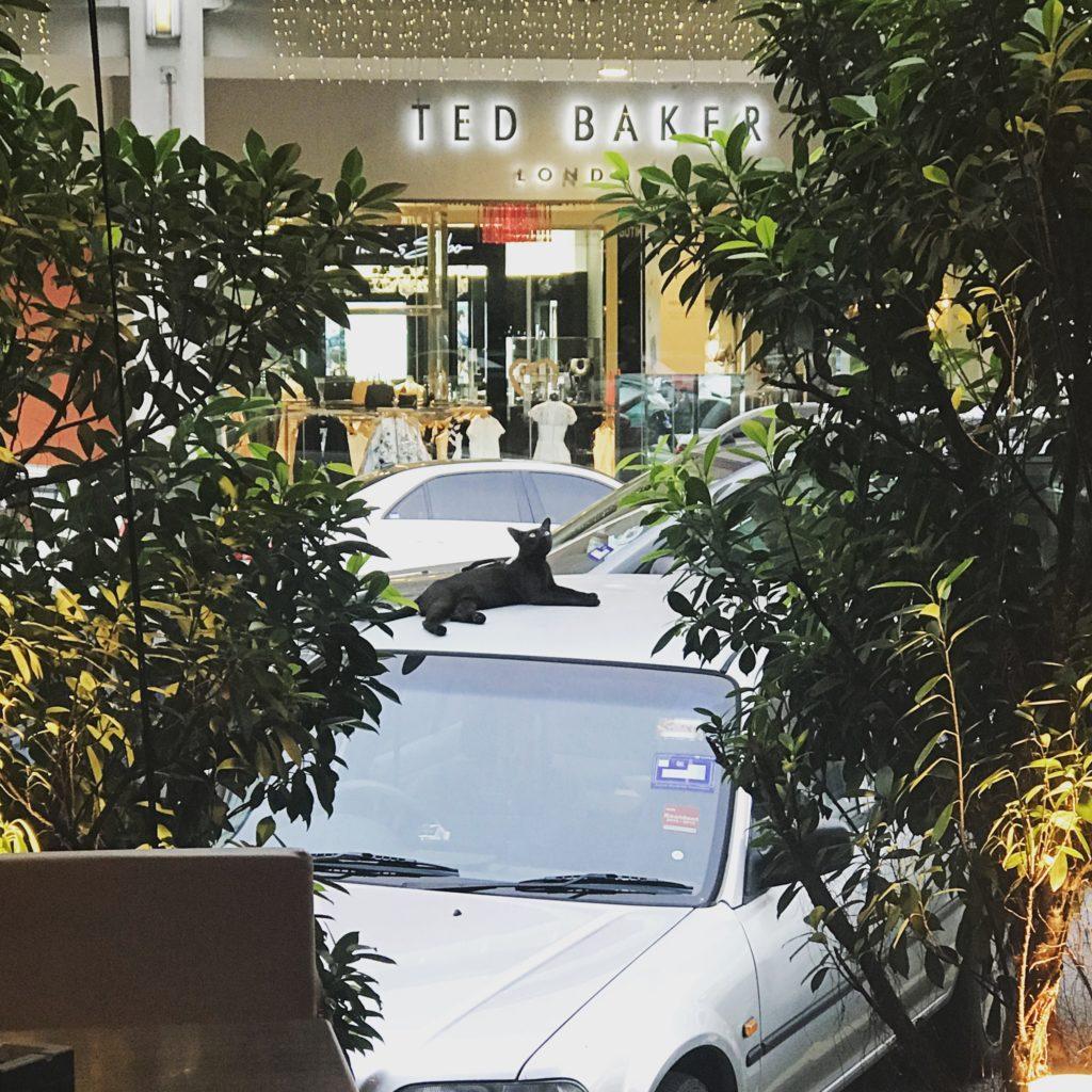 img 3609 1 1024x1024 Que faire à Kuala Lumpur pendant une semaine ?