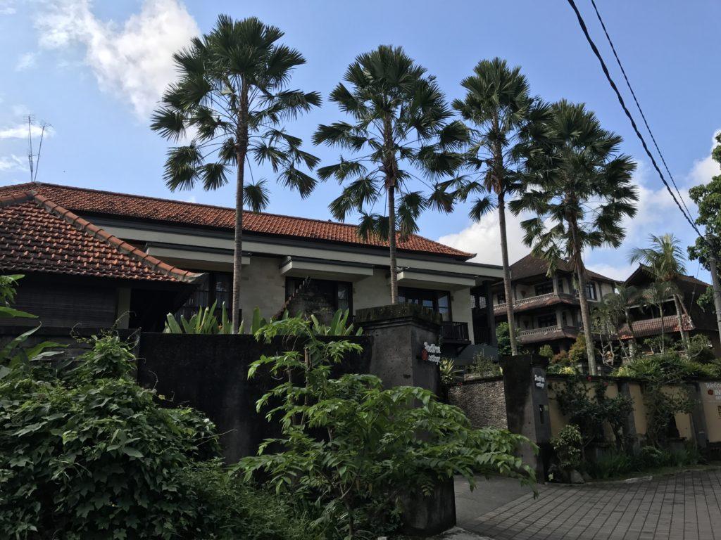 img 4210 1024x768 Ubud : Mont Batur, turmeric, courbatures et massages