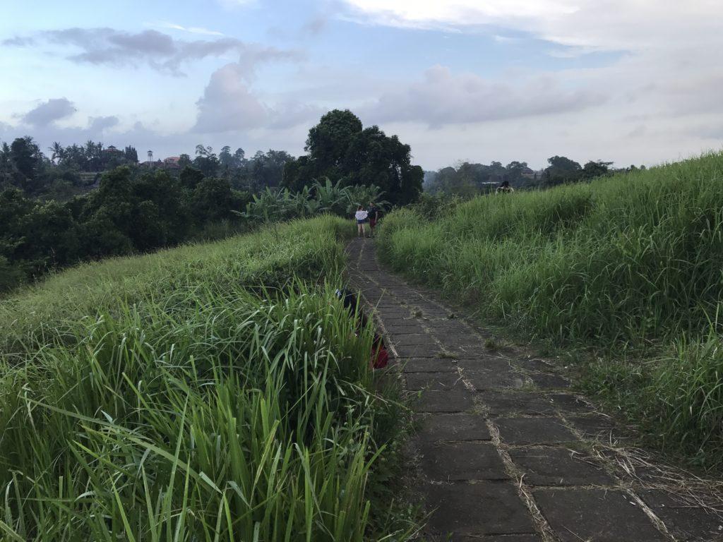 img 4226 1024x768 Ubud : Mont Batur, turmeric, courbatures et massages