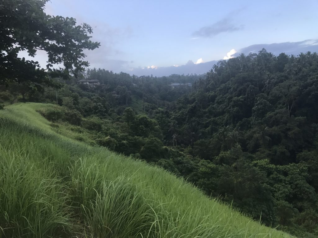img 4228 1024x768 Ubud : Mont Batur, turmeric, courbatures et massages
