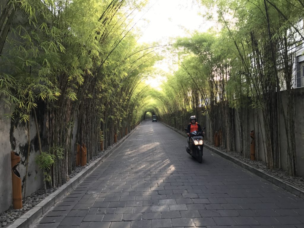 img 4511 1024x768 Seminyak, Canggu, Tanah Lot : temples et dolce vita