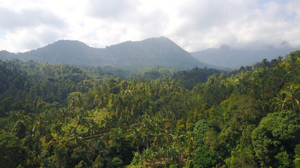 img 5450 1024x576 Singaraja, Sekumpul Waterfalls et Jatiluwih Rice Terrace