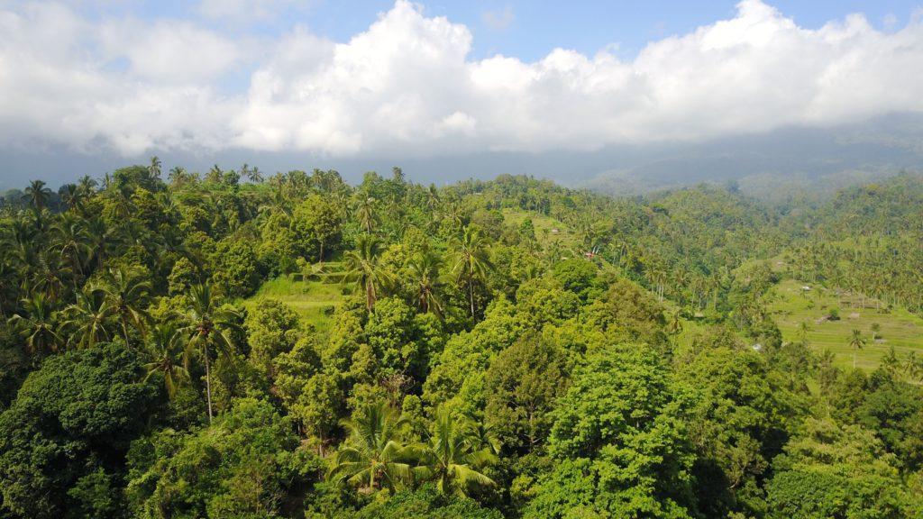 img 5454 1024x576 Singaraja, Sekumpul Waterfalls et Jatiluwih Rice Terrace